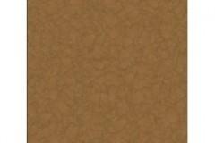 brown-600x800-290x290